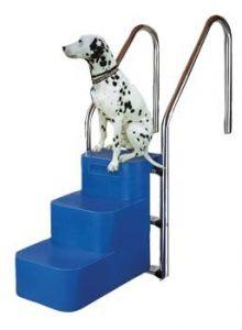 scaletta per cani